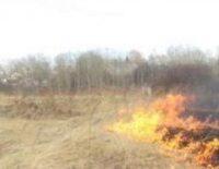 Об установлении пожароопасного сезона в лесах в связи со сходом снежного покрова